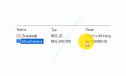 Windows 10 Tutorial - Such- und Sprachassistent Cortana unter Windows 10 Home deaktivieren - Der neu erstellte Registrierungsdatenbank Dword-Wert AllowCortana