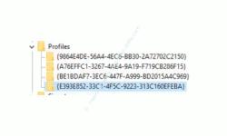 Windows 10 Netzwerk Tutorial – Der Registry Schlüssel eines Netzwerkprofiles