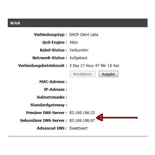 Netzwerk Tutorial: DNS-Serverprobleme beheben - Anzeige des zugewiesenen DNS-Servers im Konfigurationsmenü des Routers